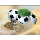 Rasender fußball 1076